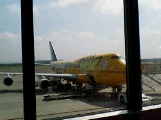 ポケモン飛行機