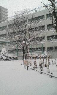 真っ白でキレイ(*^_^*)