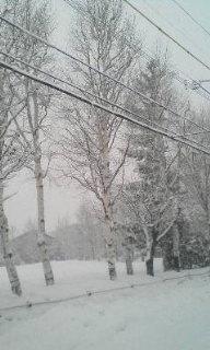 雪の中、学校まで(>_<)