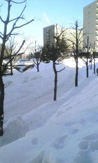 雪の怖さ。。